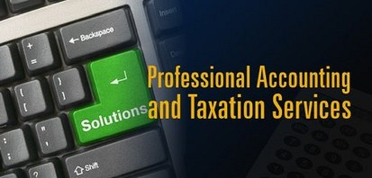 I will provide accountancy and tax related services