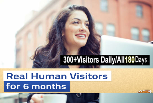I will send Unlimited TARGETED real human Website TRAFFIC for 6 months