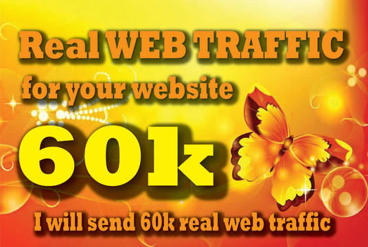 I will drive targeted website,traffic,2000 daily for 30 days
