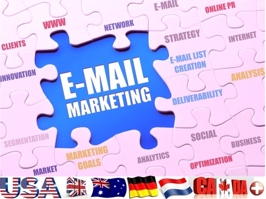 I will Provide Targeted Email List