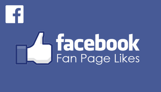 I will Instantly add 1000 Likes to your Facebook Page