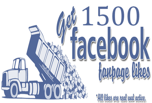 I will Give you 500 Facebook likes to your Fan Page From Real People