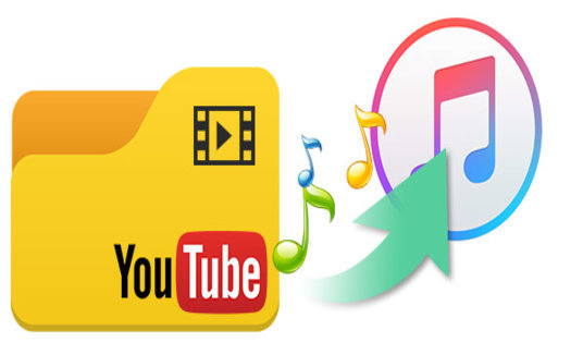 I will download and convert Any Video to any format