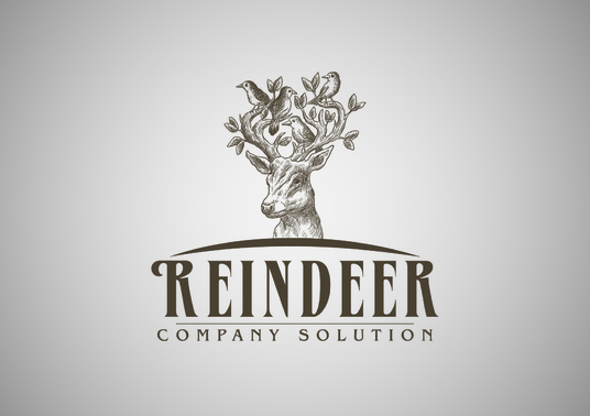 I will design professional vector logo for your company