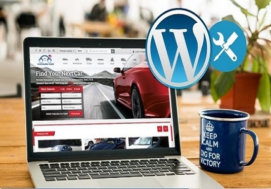 I will customize professional website using WordPress