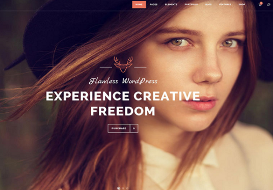 I will customize professional WordPress website with themeforest premium theme