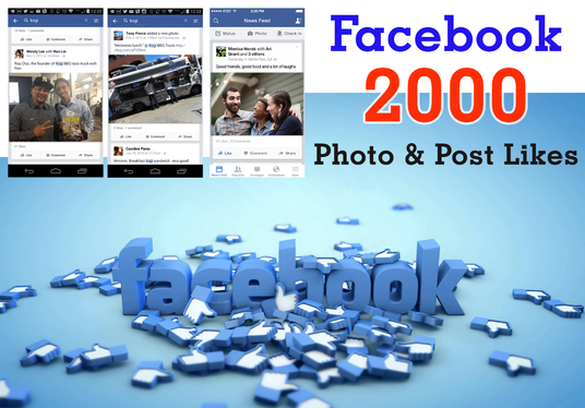 I will provide 2000 Photo Post Facebook Likes for you