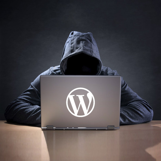 I will run a security scan on your wordpress website