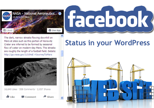 display Facebook Feed of your Facebook page in your WordPress, Joomla or Blogger website