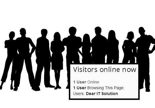 I will Show how many visitors are online in WordPress website
