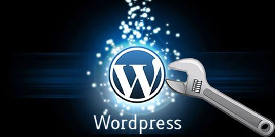 I will fix Wordpress errors, issues, problems and design theme