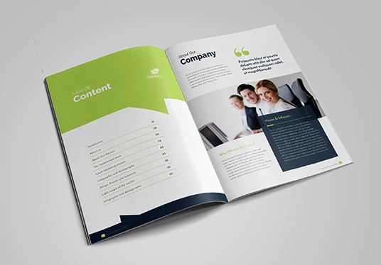 Design Professional & Corporate Business Brochure, Booklet, Magazine or Handout