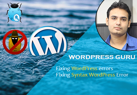 I will Fix WordPress Issues, Errors Or Any Problem