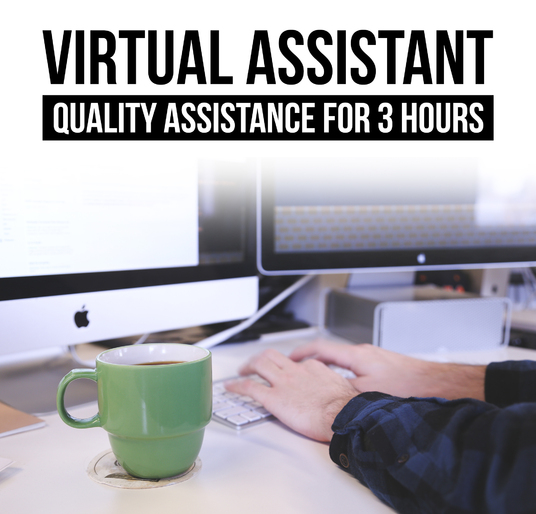 I will be your virtual assistant for 3 hours