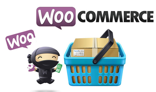 I will Add 100 Woocommerce Products To Your Ecommerce  Site