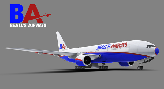 I will create a design on this plane using your logo & text