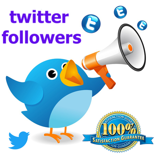 I will generate 5000+ REAL Twitter Followers