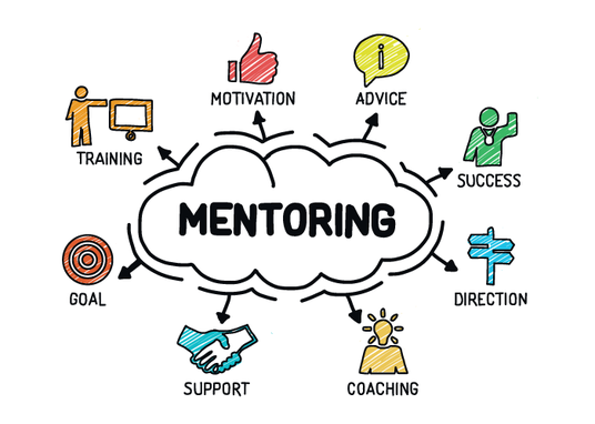 I will give you 1 hour of professional business mentoring