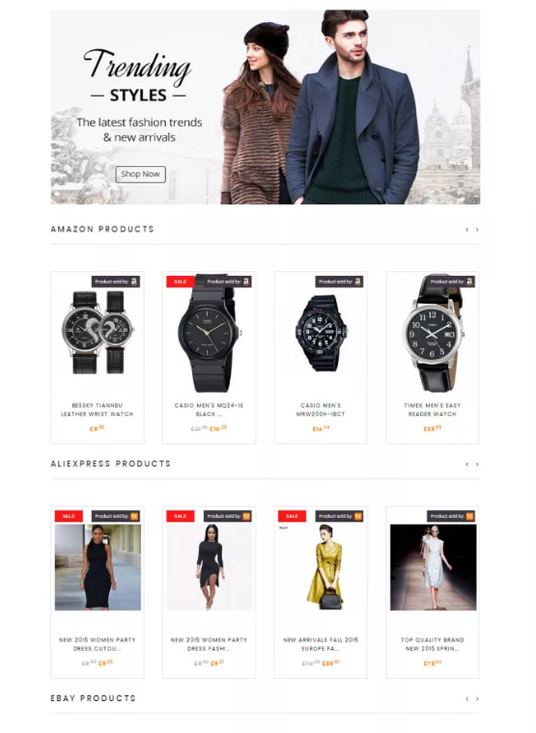 I will Make You An Aliexpress Dropshipping Website With 100 Profitable Niche Products