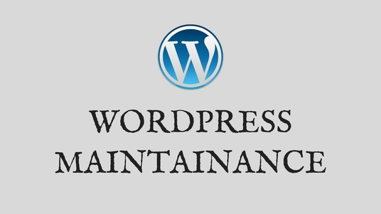 I will manage your  WordPress website every month