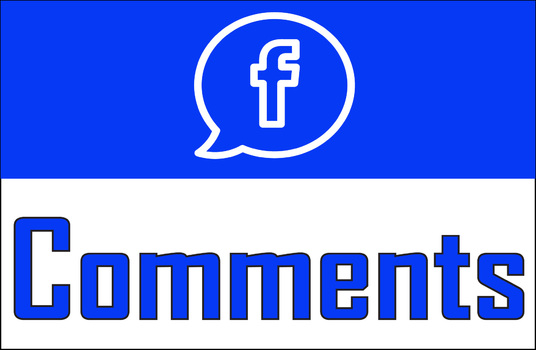I will Add 30 Facebook Custom Comments  on Your Post