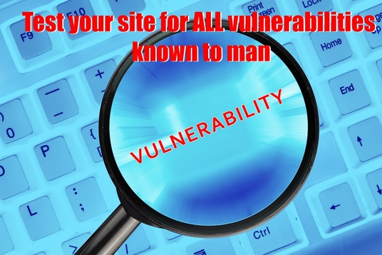 I will test your site for ALL vulnerabilities known to man