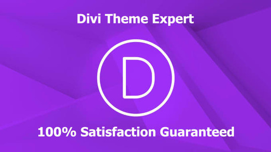 I will Install And Customize Your Divi Elegant Theme