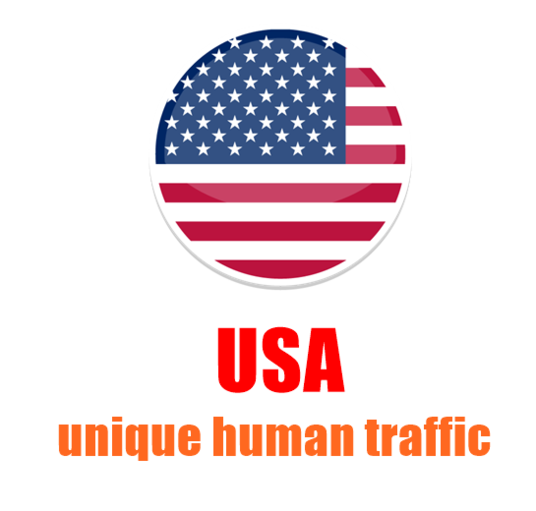 I will Provide 30,000 Quality USA Traffic To Your Website