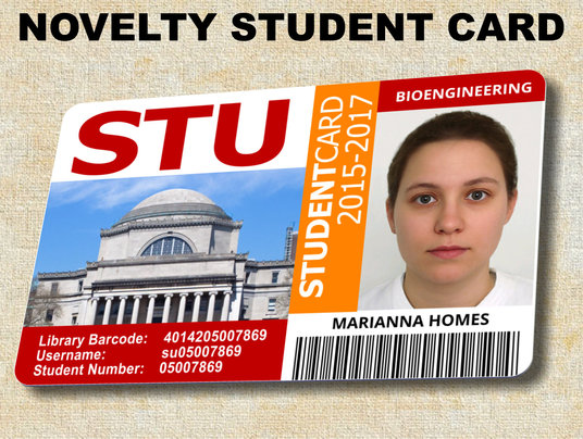 I will print and post (UK only) a bank quality hard plastic novelty student ID with YOUR name and