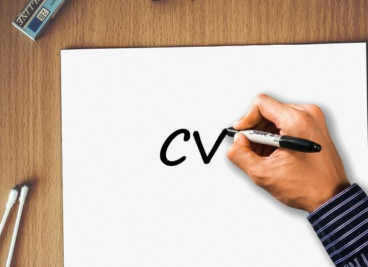 I will professionally review your CV