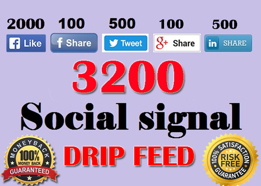 I will build manually 3200 drip feed social signal from top (PR9-PR10) site Boost your SEO rankin
