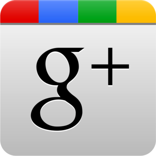 I will Provide you 300 GOOGLE PLUS FOLLOWERS