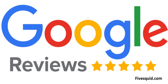 I will Write Fantastic 25 Google Reviews for your Business