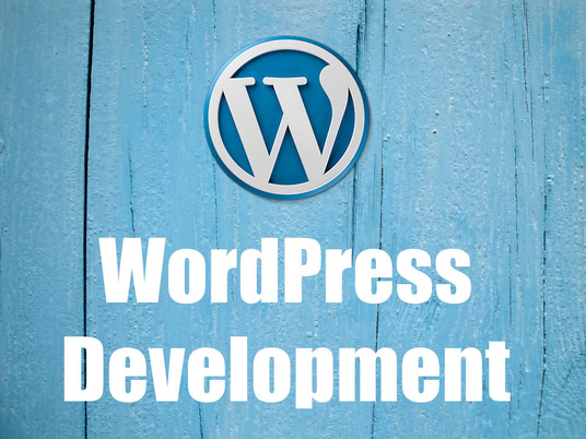 I will build a complete professional WordPress website