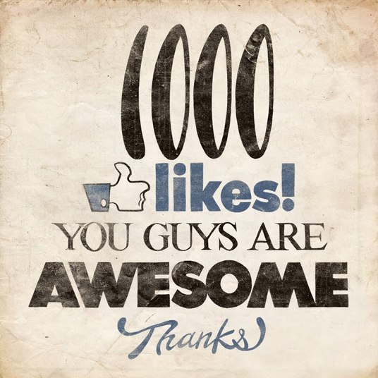 I will provide you 1000+ permanent facebook page likes