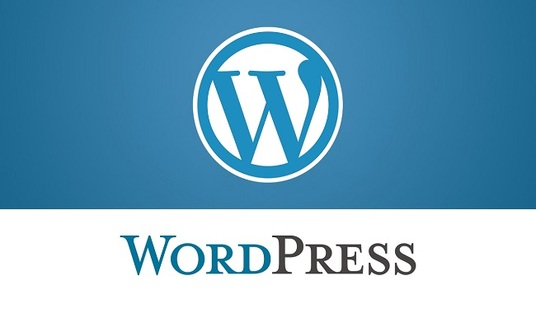 I will develop wordpress wbsite