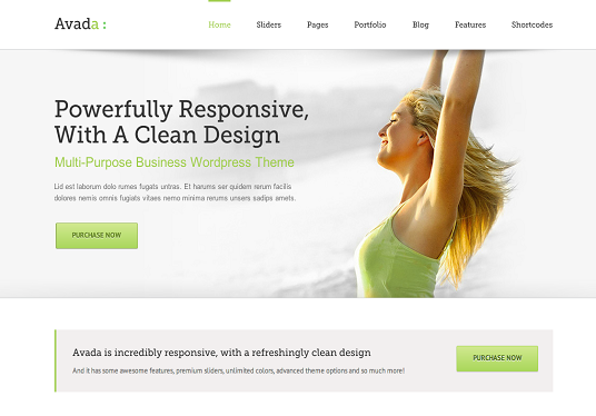 I will create Wordpress website by using Avada theme