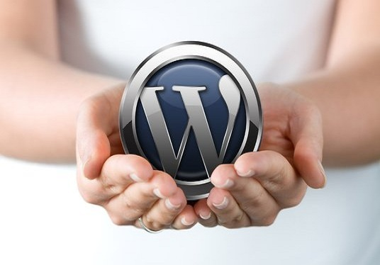 I will Install and Customize your WordPress Website