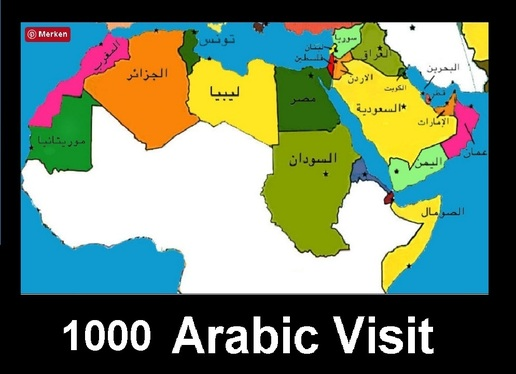 drive  1000 low bounce rate real organic Arabic Traffic