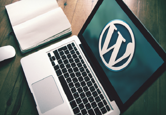 I will create professional WordPress website or blog  for you