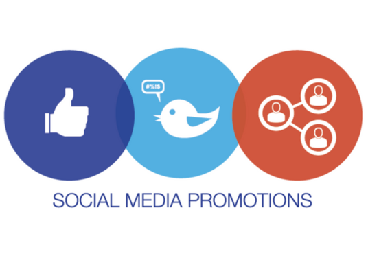 I will Run Social Media Ad Campaigns for promoting your business/website