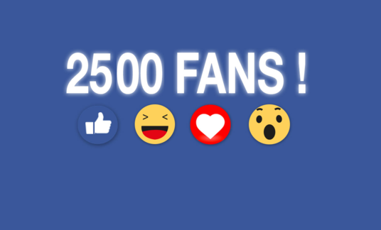 I will Add 2500 User to Your Facebook Page