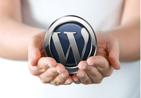 I will Install WordPress(SECURED), Setup Theme DEMO And Customize Theme VERY FAST