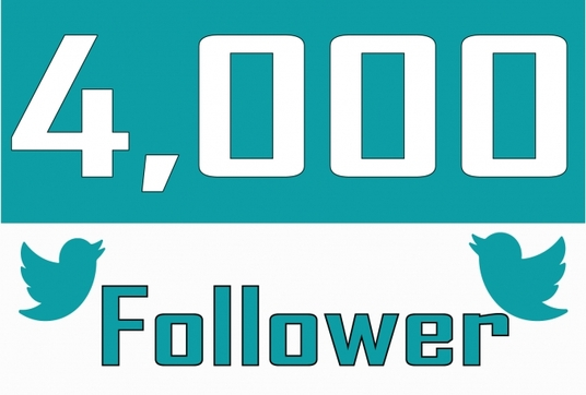 I will Deliver 4,000 Twitter Non Drop Followers