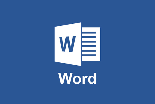 I will do any job in Microsoft Word
