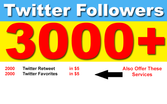 I will provide 3000 Permanent Twitter Followers