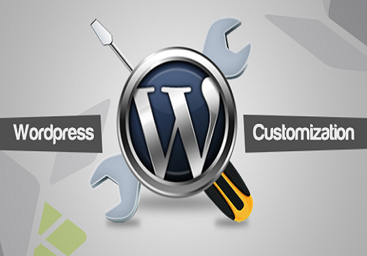 I will customize WordPress theme same as demo