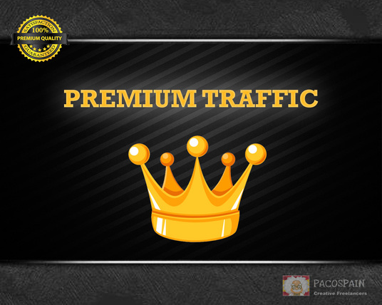 I will give you 1000 daily PREMIUM targeted visitors to your site