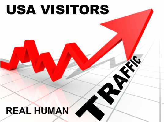 I will 1500 USA Website Visitors