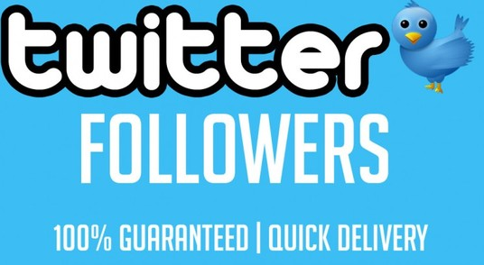 I will give You 5,000+ Fast and SAFE Twitter Followers